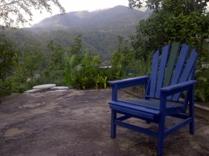 Blue chair in back yard